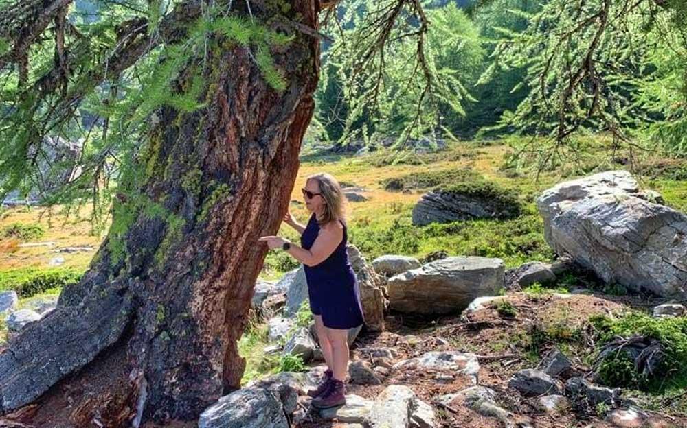 Manuela Krah vor den alten und weisen Bäumen oberhalb von Grächen.