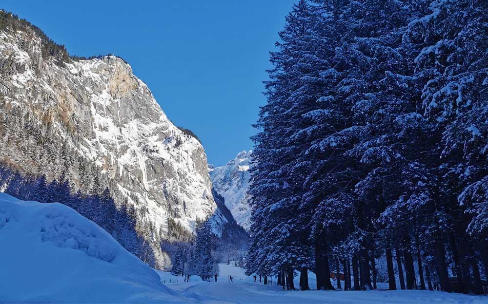Ein Schneewanderweg führt zwischen einem Berg und einem Tannenwald hindurch.