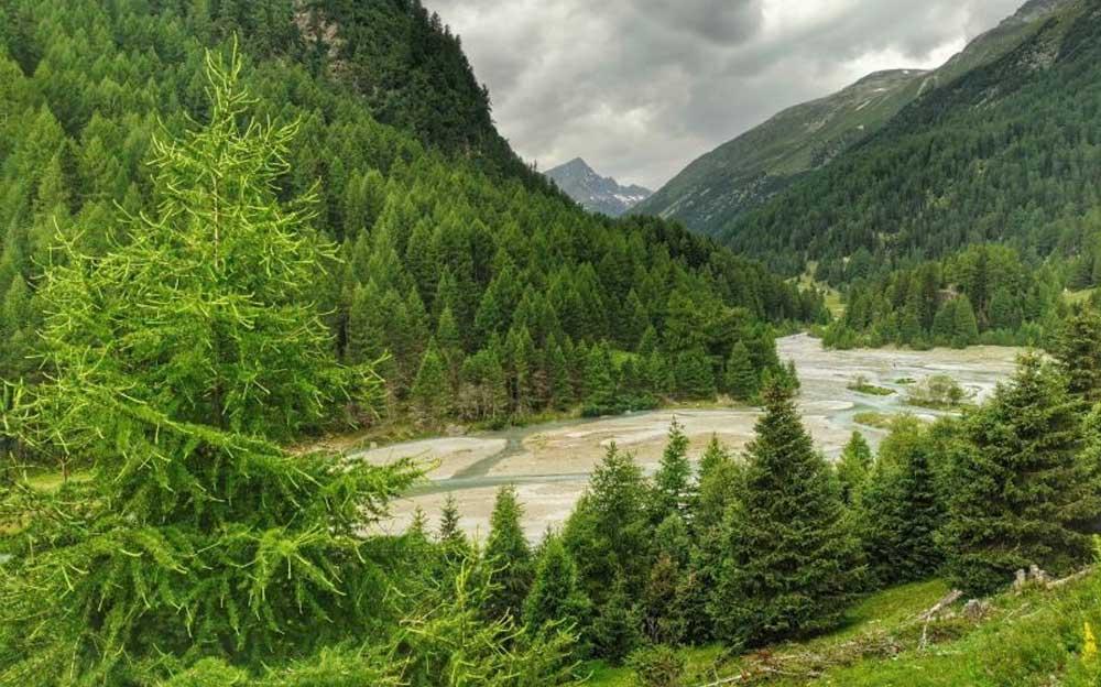 Trüber Fluss in grüner Berglandschaft. Im Hintergrund bewölkter Himmel.