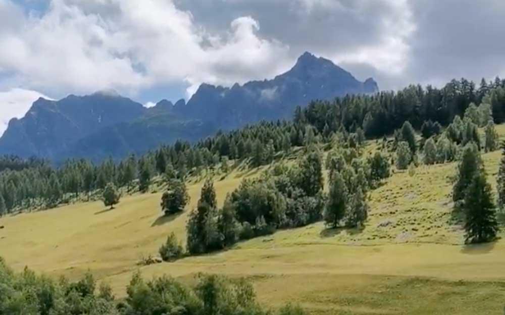 Im Vordergrund ist eine Wiese mit Blumen und ein Fluss. Ein Hügel mit Tannen ist dahinter zu sehen. Im Hintergrund ist ein Gebirge unter blauem Himmel mit weissen Wolken zu sehen
