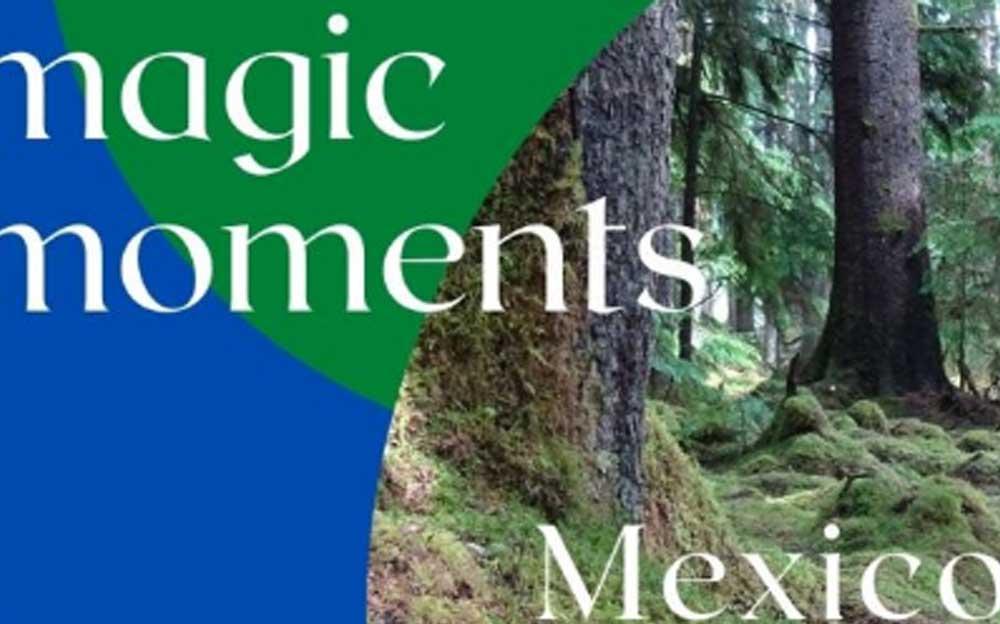 """Ausschnitt von dem Cover des Podcast """"Magic Moments"""" von Manuela Krah und Claudia Scherrer Domingos."""