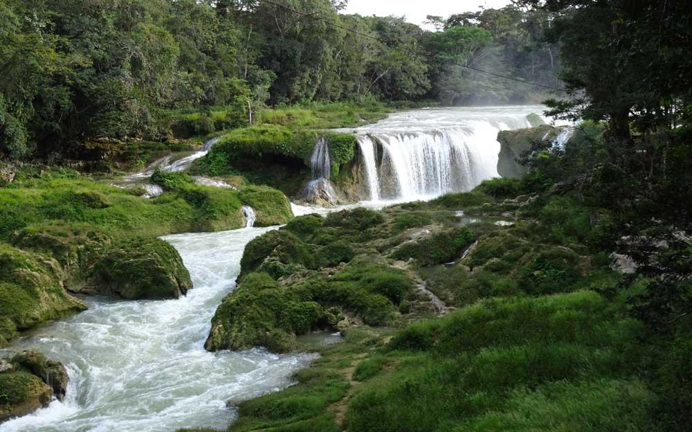 kleiner wasserfall schlängelt sich durch schöne grüne Landschaft.